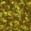 armyhelmet8 - ArmyHelmets.txd