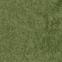 grassshort2long256 - LSBeachSide.txd