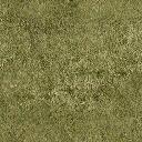 Grass - boxybld_sfw.txd