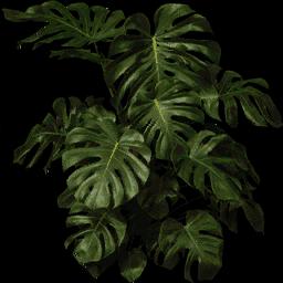 plantb256 - burnsalpha.txd