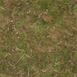 forestfloor256 - CE_farmxref.txd