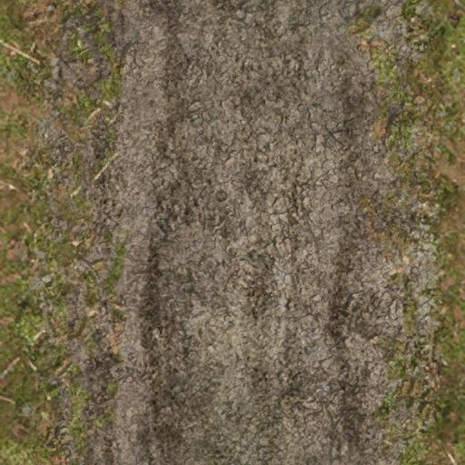 dirttracksforest - CE_ground01.txd