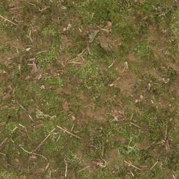 forestfloor256 - CE_ground01.txd