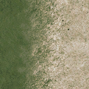 sw_sandgrass - CE_ground03.txd