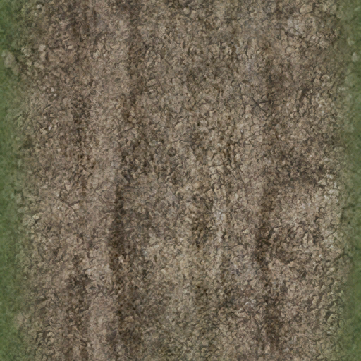 dirttracksgrass256 - CE_ground07.txd