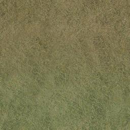 desgrassbrn_grn - CE_ground08.txd