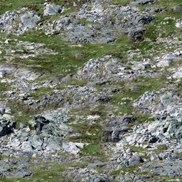 sw_rockgrass1 - CE_ground08.txd