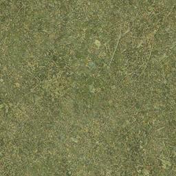 sw_grass01 - ce_ground10.txd
