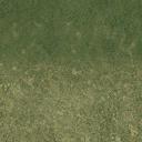 sw_grass01a - ce_ground10.txd