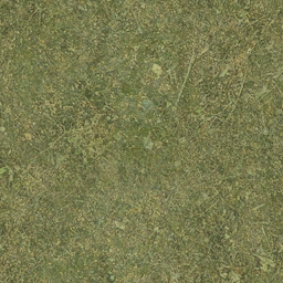 sw_grass01 - CE_ground11.txd