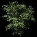 fuzzyplant256 - centralresac1.txd