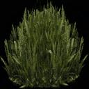 kbplanter_plants1 - centralresac1.txd