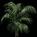 planta256 - civic02cj.txd