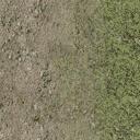 grassdirtblend - compomark_lae2.txd