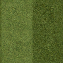 Grass_lawn_128HV - councl_law2.txd