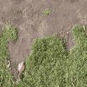 Bow_church_dirt_to_grass_side_t - crparkgm_lan2.txd