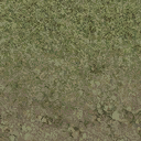 grasstype4_mudblend - cs_forest.txd