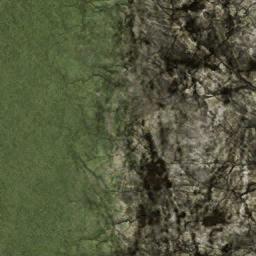 rocktbrn128blnd - cs_forest.txd
