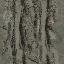 Was_scrpyd_ground_track_crv - cs_lod.txd