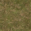 forestfloor256 - cs_lod.txd