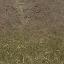 forestfloor256mudblend - cs_lod.txd