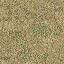 grassdeadbrn256 - cs_lod.txd
