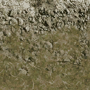forest_rocks - cuntwland.txd