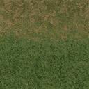 grass10forest - cuntwland.txd