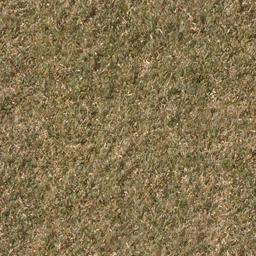 grassdead1 - cuntwland.txd