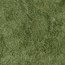 grassdeep256 - cuntwland.txd