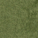 grassshort2long256 - cuntwland.txd