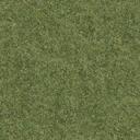 grasstype4 - cuntwland.txd