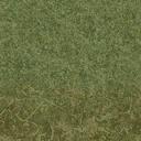 grasstype4_forestblend - cuntwland.txd