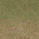 grasstype4_staw - cuntwland.txd