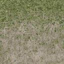 grass4_des_dirt2 - cuntwlandcarparks.txd