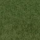 grass10_grassdeep1 - cuntwlandcent.txd