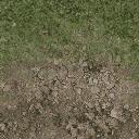 grass10dirt - cuntwlandcent.txd