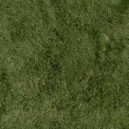 grassdeep1 - cuntwlandcent.txd