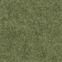 grasstype510 - cuntwlandcent.txd