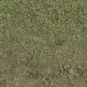 grasstype4_mudblend - cuntwlandse.txd