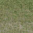des_dirtgrassmix_grass4 - cuntwlandwest.txd