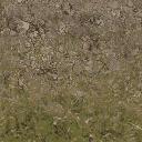 desertstones256forestmix - cuntwlandwest.txd