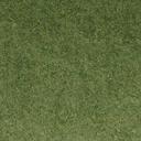 grasstype10_4blend - cuntwlandwest.txd
