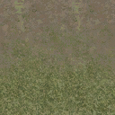 grasstype4blndtodirt - cuntwlandwest.txd