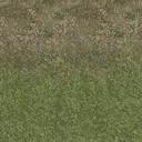 grasstype4blndtomud - cuntwlandwest.txd