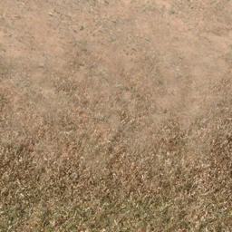 des_dirt2dedgrass - des_se2.txd