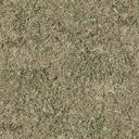 grasstype5 - des_se3.txd