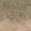 grasstype5_desdirt - des_se3.txd