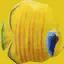 fish2 - fish1.txd