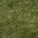 grassgrn256 - fishwarf.txd
